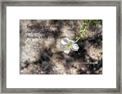 Just Living Framed Print by Nadine Berg