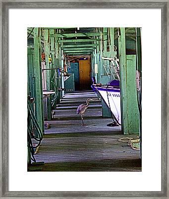 Just Look'n Not Buy'n Framed Print