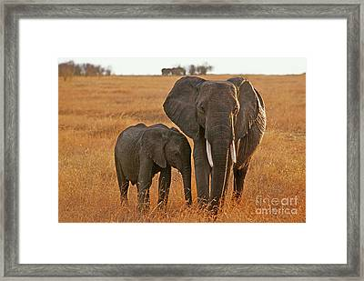 Just Mom And Me Framed Print