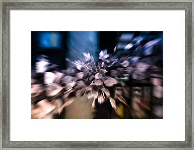 Just My Imagination Framed Print by Silvia Bruno