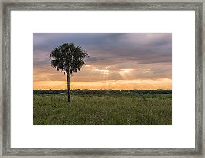 Just My Luck Framed Print