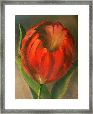 Just One Red Tulip Framed Print by Vikki Bouffard