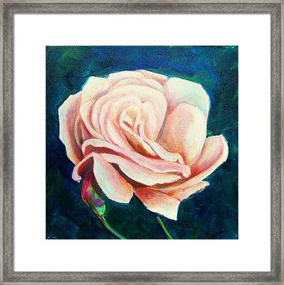 Just Peachy Framed Print by Dana Redfern