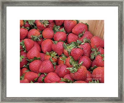 Just Picked Framed Print by Ann Horn