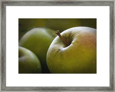 Just Picked Framed Print by Sharon Foster