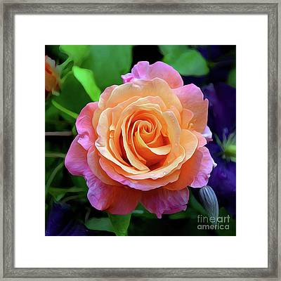 just pink rose 0221 Hope and a Future Framed Print