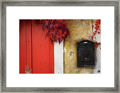 Just Red Framed Print