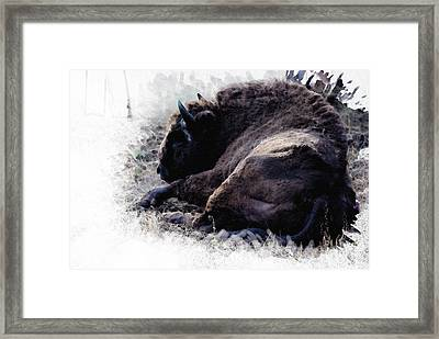 Just Relax Framed Print by Diana Van