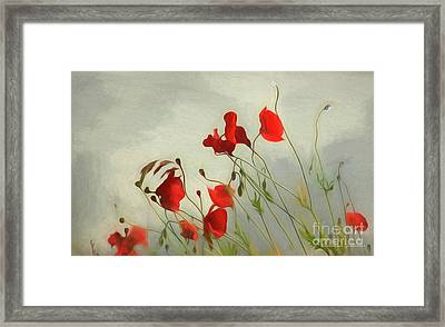 Just Some Poppies Framed Print
