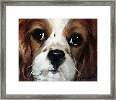 Just Sweet Framed Print by Mary Sparrow