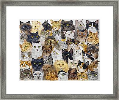 Just The Cat's Whisker Framed Print