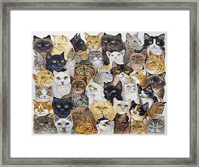Just The Cat's Whisker Framed Print by Pat Scott