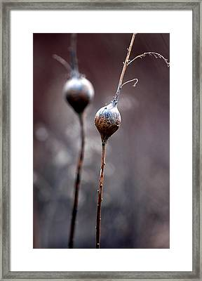 Just The Two Of Us Framed Print by Russell Styles