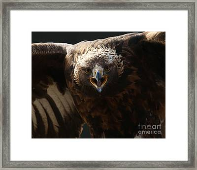 Just Try Me Framed Print