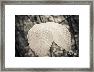 Just Two Left Framed Print