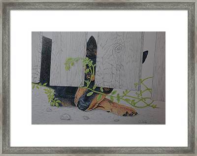 Just Wanna Be With You Framed Print by Arlette Seib