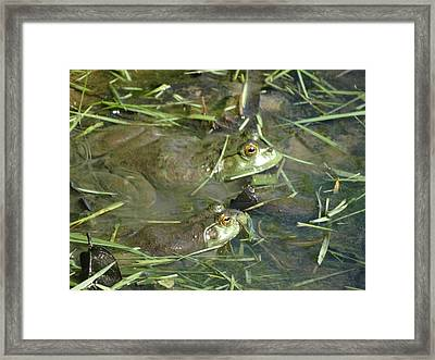 Just Watch Framed Print by Greg Boutz