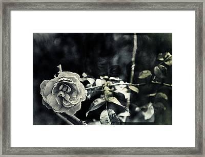 Justitita Framed Print by Nicole Frischlich