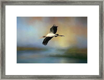 Framed Print featuring the photograph Juvenile Woody by Donna Kennedy