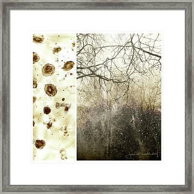 Juxtae #17 Framed Print