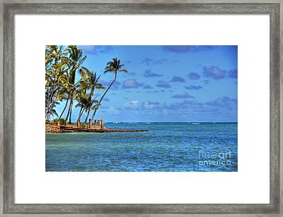 Kahaluu Oahu Palms Framed Print
