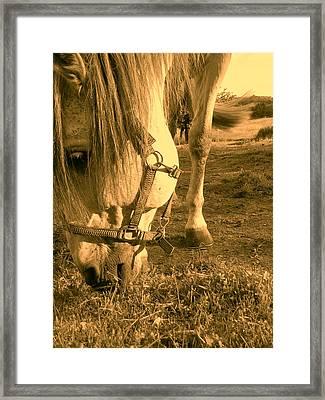 Kahn I I Framed Print
