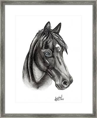 Kahnali Framed Print by Crystal Suppes