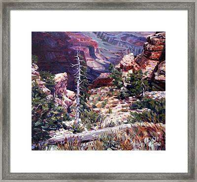 Kaibab Trail Framed Print by Donald Maier