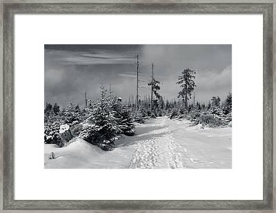 Kaiserweg, Harz Framed Print