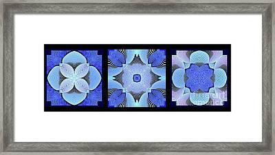 Kal - C6922 Framed Print
