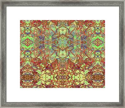 Kaleid Abstract Tapestry Framed Print