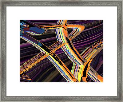 kaleido-Papillon Callg.10x11m23i Framed Print by Terry Anderson