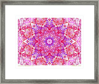 Kaleido Red Rubi 8 Framed Print by Terry Anderson