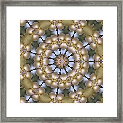 Framed Print featuring the digital art Kaleidoscope 130 by Ron Bissett
