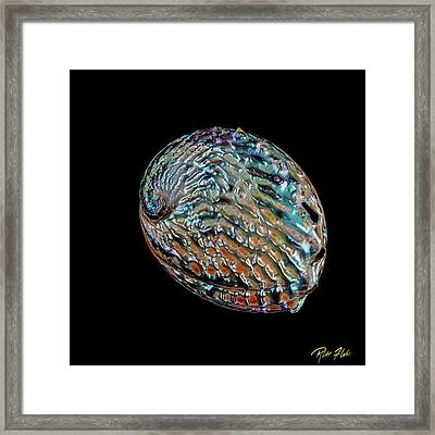 Framed Print featuring the photograph Kaleidoscope Abalone by Rikk Flohr