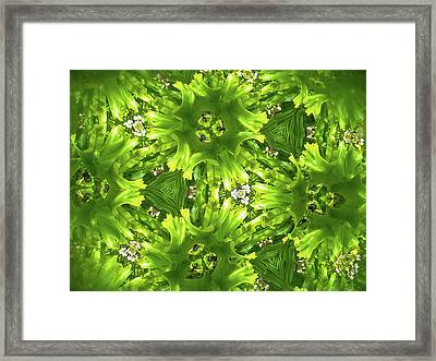 Kaleidoscope Flower Framed Print by Julia Wilcox