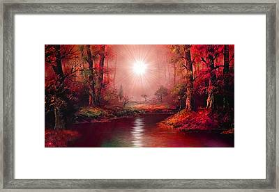 Kaleidoscope Forest Framed Print by Michael Rucker