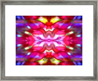 Framed Print featuring the photograph Kaleidoscope Wonder by Barbara Tristan