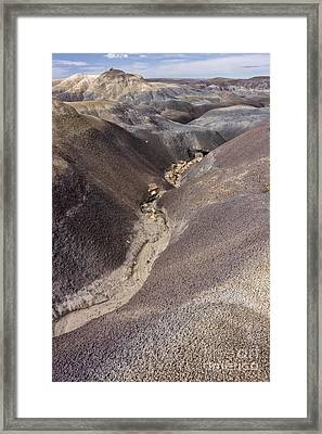 Framed Print featuring the photograph Kaleidoscope Landscape by Melany Sarafis
