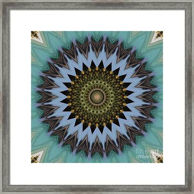 Kaleidoscope O Eleven Framed Print