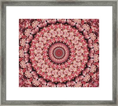 Kaleidoscope Roses Framed Print by Bright Designs
