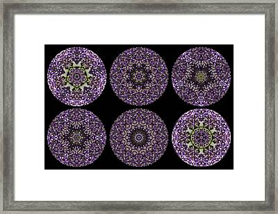 Kaleidoscope Sampler Framed Print by Teresa Mucha