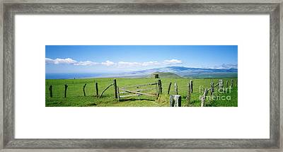 Kamuela Pasture Framed Print by David Cornwell/First Light Pictures, Inc - Printscapes