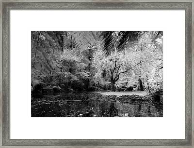 Kanangra Framed Print by Mihai Florea