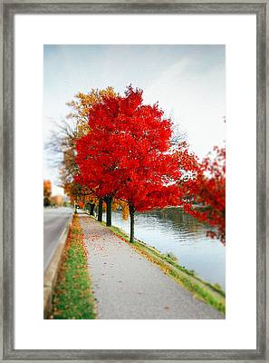 Kanawha Boulevard In Autumn Framed Print