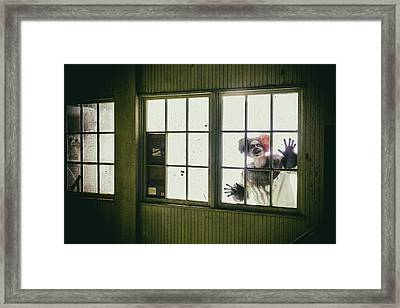 Kandy Glass Framed Print by CJ Schmit