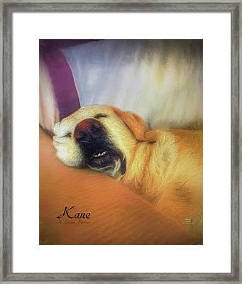 Kane Framed Print