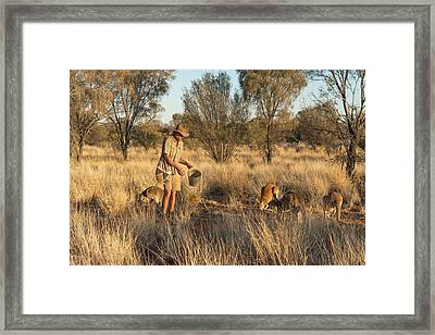Kangaroo Sanctuary Framed Print