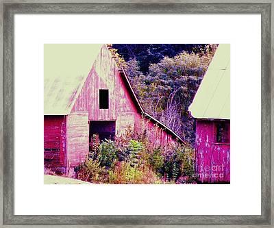 Kansas Country Framed Print by Christine Belt