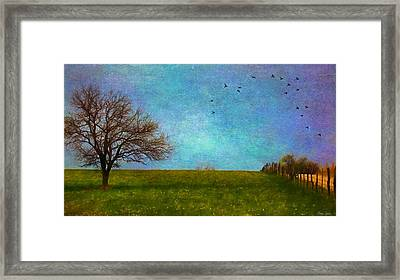 Kansas Early Spring Prairie Framed Print